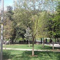 Parco Gezi