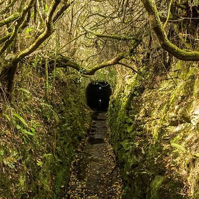 Entrada al túnel (bocamina)