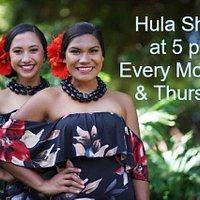 Stop by Poipu Shopping Village every Monday & Thursday at 5 pm for Hula and Live Hawaiian Music at our stage area under the Banyan trees.  We look forward to see you! Aloha & Mahalo.