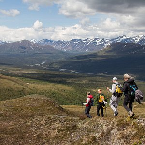 Our private day trips are designed specifically for the abilities and interests of your group. Whether the priority is to hike, identify the flora and fauna, capture photos, or simply to have a professional, local Alaskan guide take you on a sightseeing adventure—we will customize the day specifically for you. We like to get away from crowds and maintained trails and show visitors our wild Alaskan backyard.  Hiking, backpacking, packrafting, rafting trips daily.   Group Trip options available.