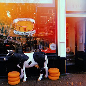 Just another lovely day at the Amsterdam Cheese Museum.