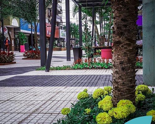 Paseo Peatonal de Formosa Capital