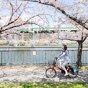 HUBchari is the best choice to sightseeing Osaka.