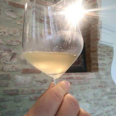 Ex Monastero delle Clarisse - In vino veritas