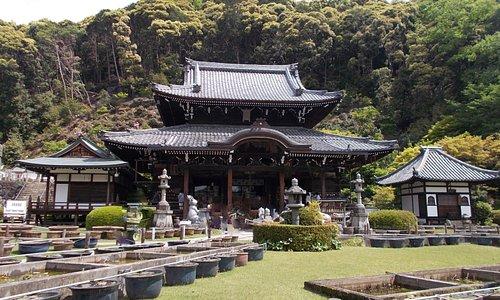 三室戸寺 本堂