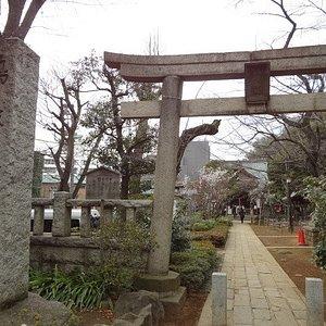 「富士塚」は鳩森神社の境内にあります