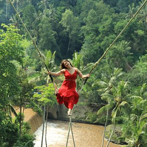 Giant Swing between the coconut tree
