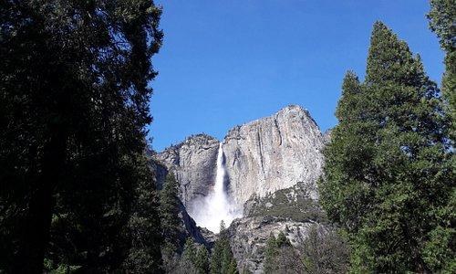 Yosemite Parc