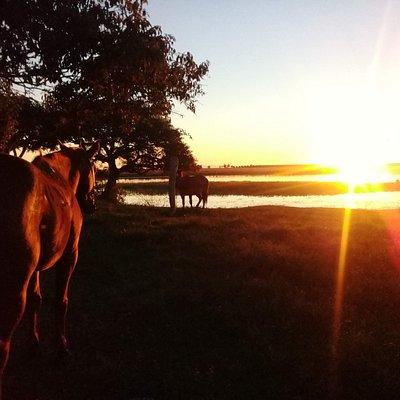 Atardecer en Corrientes. Conociendo nuestro país, cabalgatas en Salta, cruce de Los Andes y Corrientes.