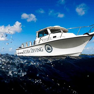 The Silver Thatch Watersports Dive Boat - The Parker.