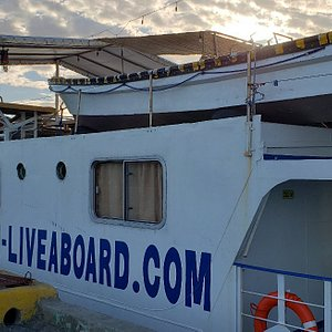 The MV Dolphin, the boat, karaoke night,  the dive sites and the crew