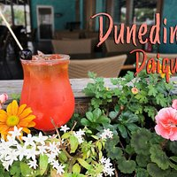 Dunedin Daiquiri. Locals preferred spot for happy hour.   25 minutes from Clearwater Beach and only 10 minutes from Honeymoon Island.  Open 7 days a week for lunch and dinner