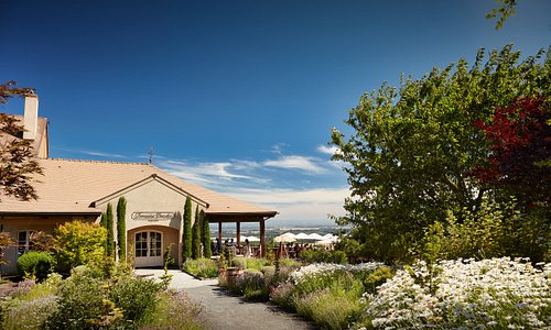 Welcome to Domaine Drouhin Oregon