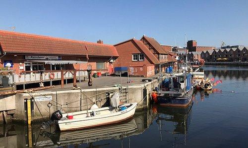 Alter Hafen und Fischdieb
