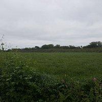 Castle Killbury ruins