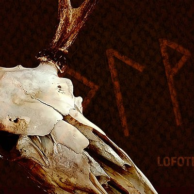 """Lofoten Esape tilbyr to rom """"Odins Øye"""" og """"Arven"""". """"Odins Øye"""" er satt til vikingtiden i Lofoten og dere har fått et farlig og vanskelig oppdrag."""