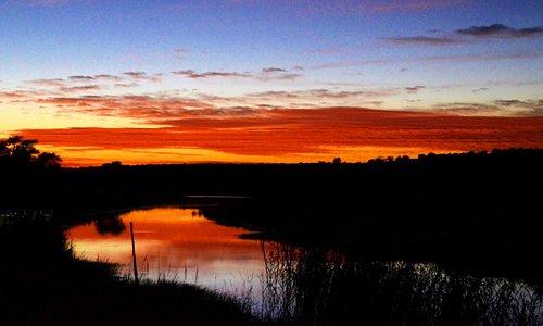 Watching the sun goes down during a boat cruise on the Chobe River is unforgettable. Good night Botsuana. For more tipps visit www.Urlaubsreise.blog #botswana #visitafrica #sunrise #africa #chobe #nature #nationalpark #rivercruise #sunset #visitbotswana