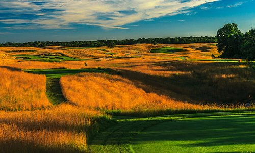 Golden fescue frames tees and fairways.