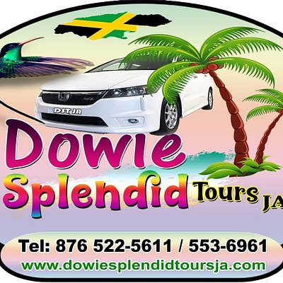 Choose Dowie Splendid Tours JA for your airport transfer and excursions all our price is very reasonable and affordable.