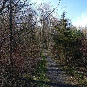 Westside Trails