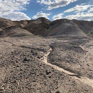 Kit Fox Hills - Death Valley (3)