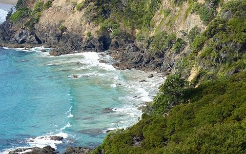 Hiking, Great Barrier Island