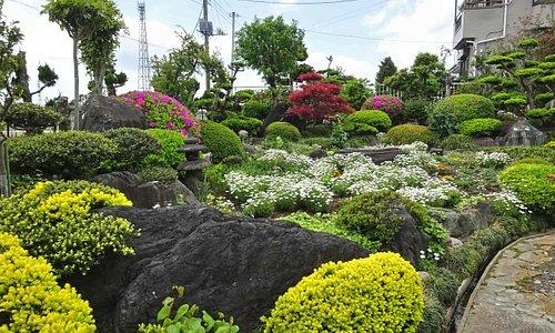 注文品が届くまで脇の庭を楽しむ事ができます。