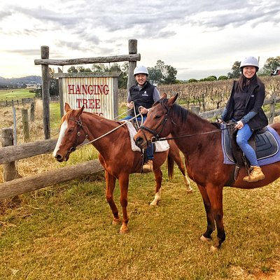 You can be an absolute beginner and feel safe on the gorgeous horses, Ming and Lee enjoying their ride.