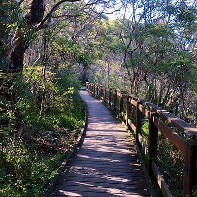 Bradley's Head Trail