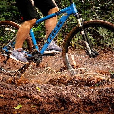 Nuestra bicis son de primera linea. Alquiler de bicis en Iguazu, la tierra de las cataratas.