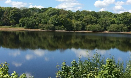 Stunning views English countryside 🌳  🌹 Rivington village is a lovely place to visit lots of walks and bike treks 🚲