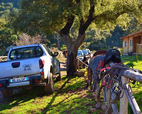 escursioni in jeep e cavallo