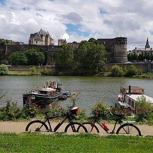 Découvrez la douceur angevine sur nos circuits sur la  Loire à vélo.