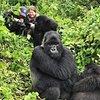 Pamoja Safaris Ltd