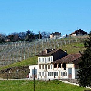 La nostra cantina, sita tra Langhe, Roero e Monferrato. Our winery, located between Langhe, Roero and Monferrato.