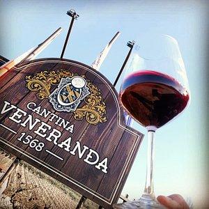 La cantina La Veneranda è situata nella meravigliosa cornice di Montepennino, a Montefalco e si affaccia sulle morbide e suggestive colline umbre.