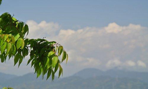 テラスからの眺め。山頂だけ見えた富士山