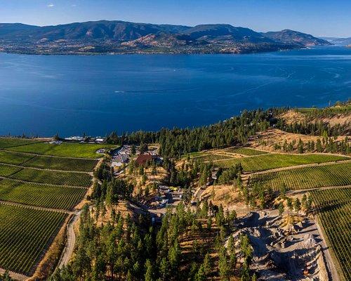 Panoramic view of Home Block Vineyard at CedarCreek Estate Winery