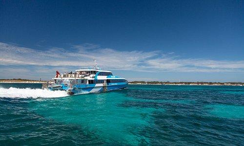 Quokka 1 arriving on Rottnest Island