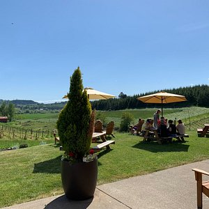Another gorgeous day in wine country.