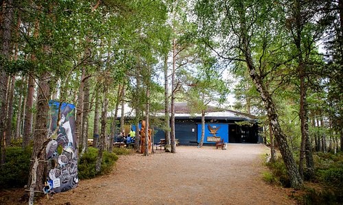 Set amidst the beautiful, wildlife-rich Caledonian pineforest