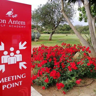 Meeting Point @drivingrange @sonantem