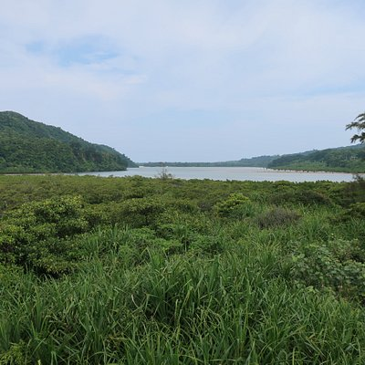 星立天然保護区域