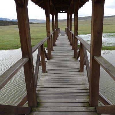 L'ultimo ponte ..... prima di arrivare alla meta