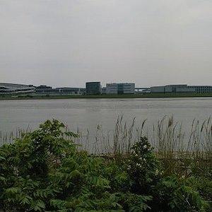 緑地から対岸の川崎市を見る