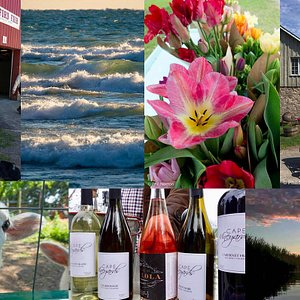 Meet the local people, taste the wine, feel the great lake breezes.