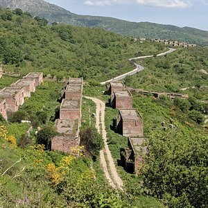 """Borgo Morfia, a truly incredible """"ghost town"""" in Sicily. Its only inhabitants are the cows. It's very quiet and peaceful here."""
