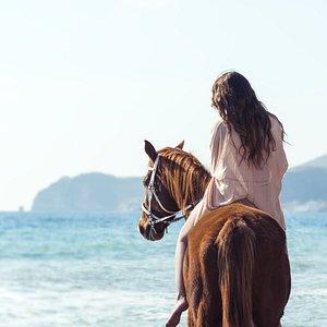 Santorini Horse Riding to Eros Beach