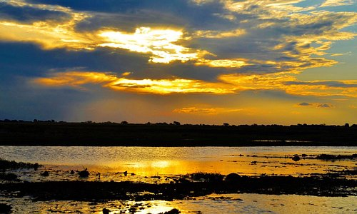 The last one from Botsuana. We really recommend the Chobe Nationalpark- you definitely will love it. For more tipps visit www.Urlaubsreise.blog #botswana #visitafrica #sunrise #africa #chobe #nature #wanderlust #sunset #river #skyporn