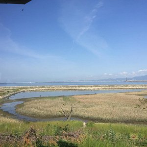 View of the water from Observation Post.